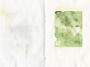 Seite 3, Die Grünen Seiten